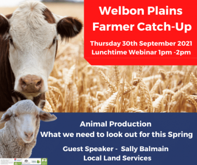 Webinar - Animal Production – What we need to look out for this Spring